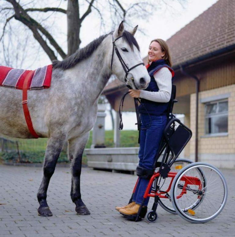 silla-de-ruedas-levo-lae-3
